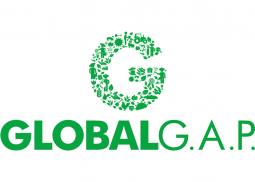 GLOBAL G.A.P Le processus de certification au Maroc, en Afrique, Casablanca